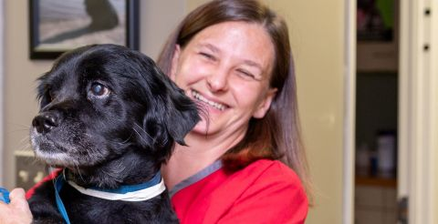 Compassionate Veterinary Care at Stage Road Animal Hospital