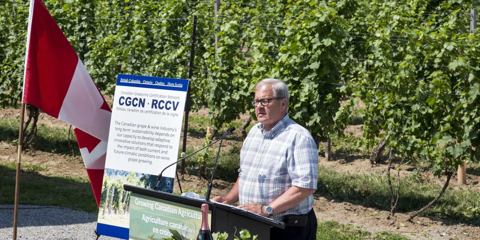 The Canadian Grapevine Certification Network