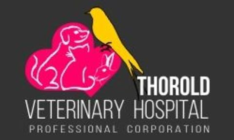 Thorold Veterinary Hospital